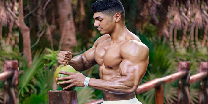 Muscle Building General